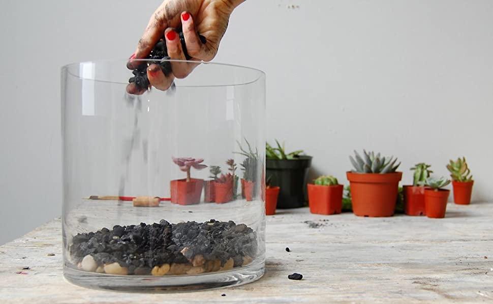 carbón activado para plantas